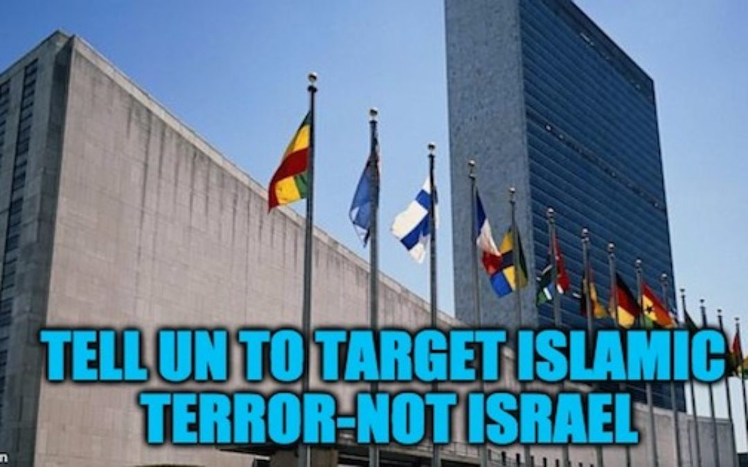 Rally At UN Thurs.1/12: Tell UN To Target Islamic Terror-NOT ISRAEL