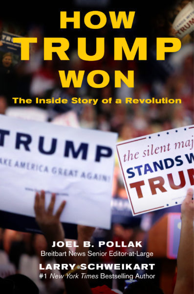 How Trump Won - COVER_subtitle