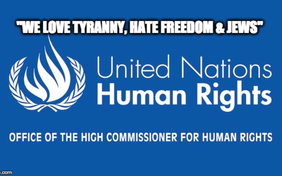 UN Watch's Hillel Neuer SHAMES Anti-Israel UN Human Rights Council Into Silence