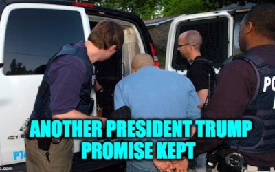 Arrests of Illegal Immigrants Have Doubled Under President Trump
