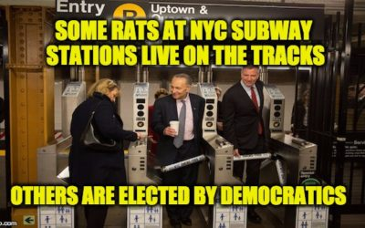 Chuck Schumer Blames POTUS For Nightmare That Is The NYC Subways