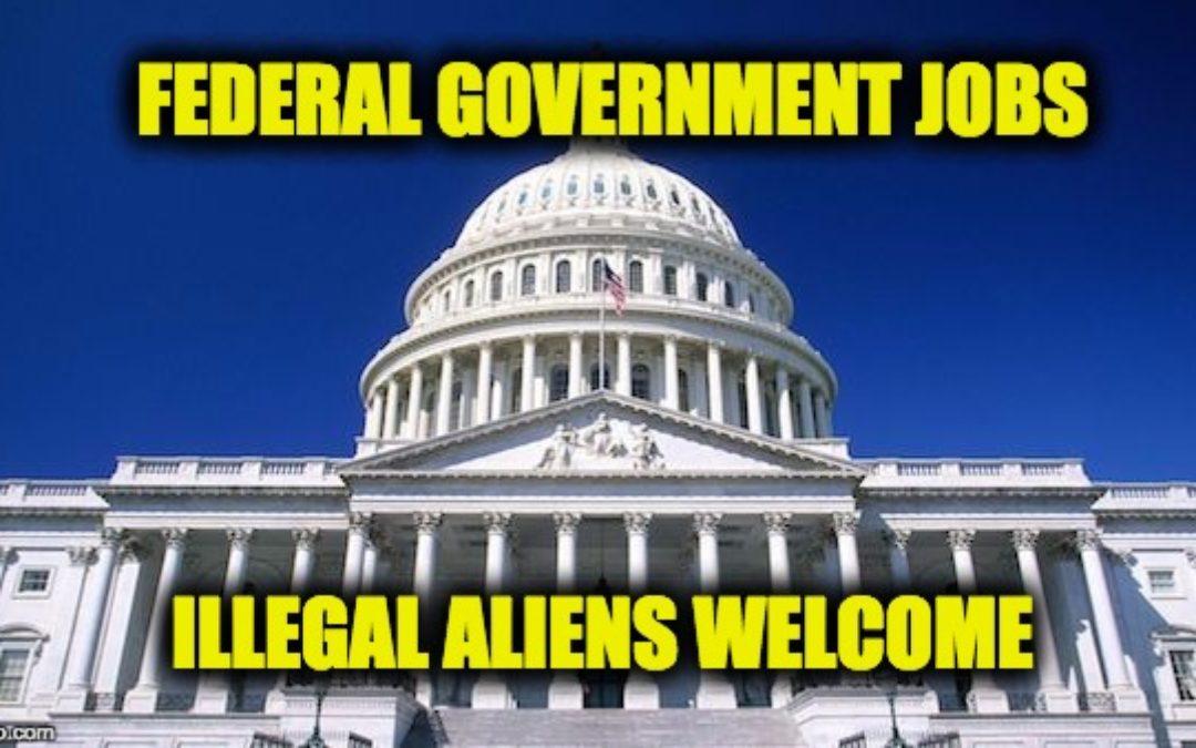 Democrat's Amendment To Spending Bill Allows Illegals to Get Federal Jobs