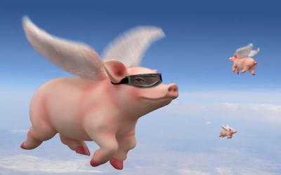 Pigs Fly!  Morning Joe Admits Russia Didn't Give Trump Win