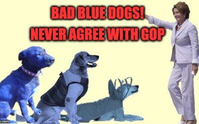 Blue Dog Democrats Warming Up To Parts Of GOP Tax Plan
