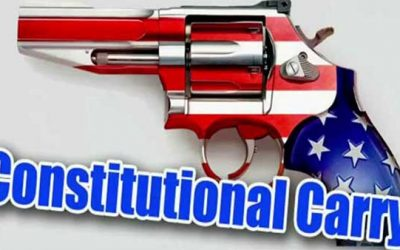 Constitutional Carry Legislation Passes in Michigan House