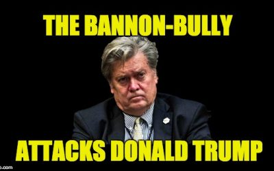 We Knew Bannon's A Bully Who Spreads Nasty Rumors, But Disloyal Too?