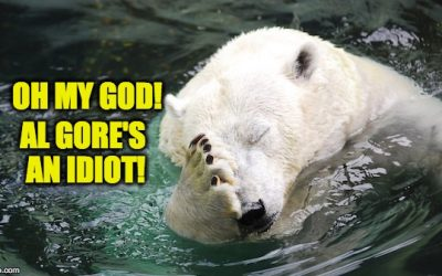 HE'S NUTS! Scientists React To Al Gore Claim Cold Snap Caused By Climate Change