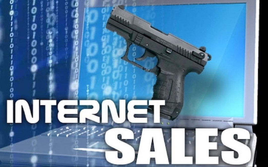 GAO Test Of Online Gun Sales Leaves Egg on Faces Of Gun Opponents