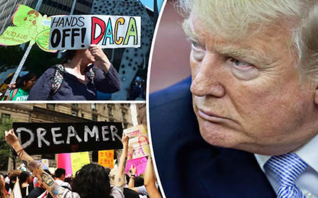 Dem Memo Says 'Dreamers' Are Key To The Future, Will POTUS Deliver New Democrat Voter Block Via Amnesty?