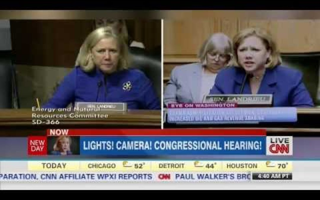 Mary Landrieu's Bogus Ad is Met With Media Disdain