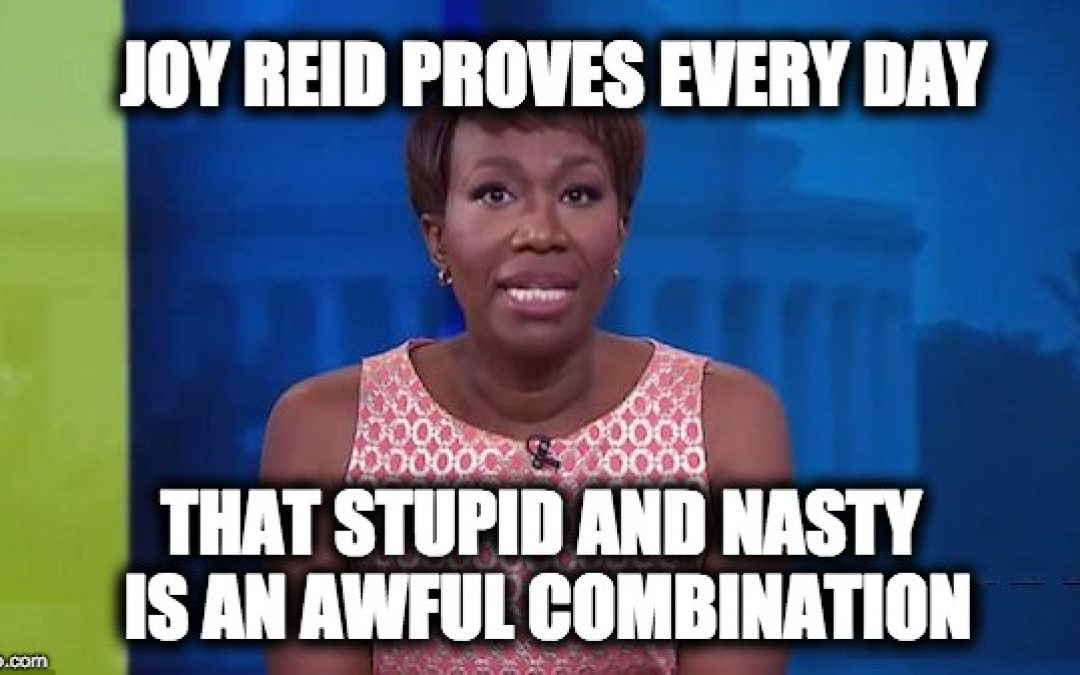Joy Reid: A Combination of Stupid AND Nasty