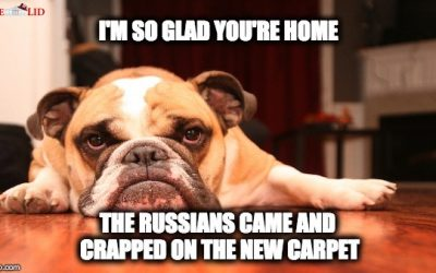 Sometimes Memes Explain Russiagate Better Than Words