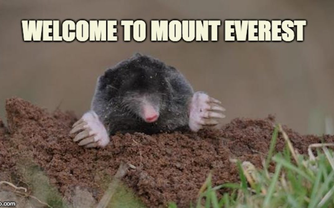 Liberals Making Mountain Out Of Meddling Molehill