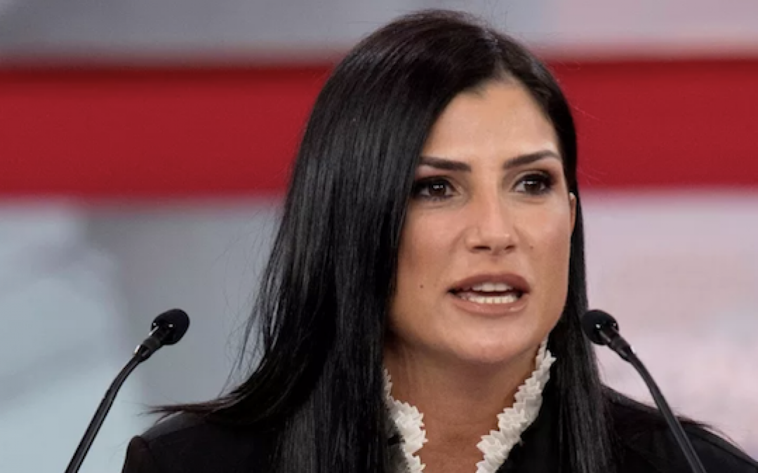 LIBERAL HATE: Writer For 'The Root' Hopes Dana Loesch Slowly Burns To Death In Car Fire