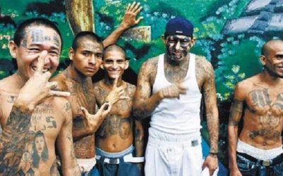 Obama's Border Chief: MS-13 Gang Members Laugh At How Easy It Is To Cross Border