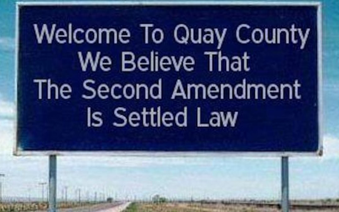 New Mexico County Declares It's A '2nd Amendment Sanctuary,' Defying Left-Wing State