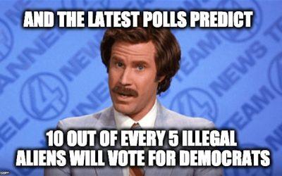 Democrats Vote For Illegal Alien Voting