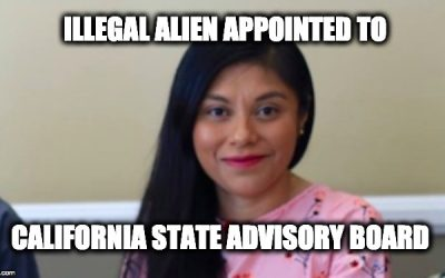 California illegal alien