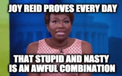 MSNBC's Joy Reid Says Mueller Report 'Feels Like The Seeds Of A Cover-Up'(Video)