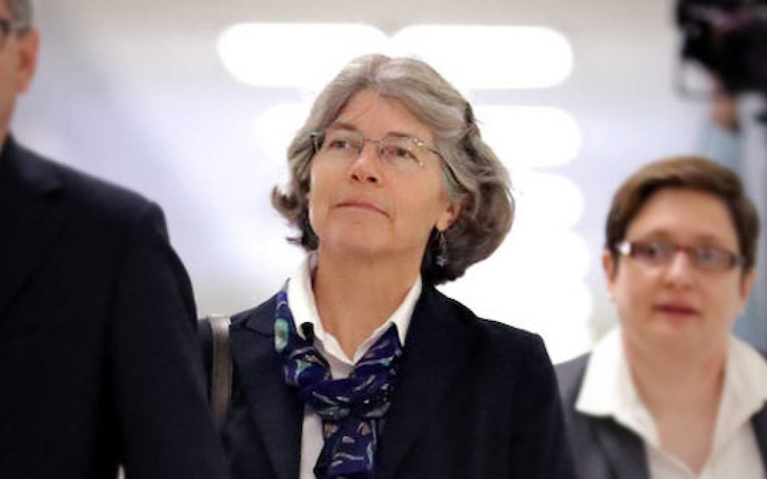 The Illustrated Swamp: New Revelations About Nellie Ohr's Role In 2016