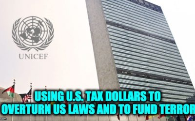 UNICEF Using OUR Tax Dollars For Terrorism And Campaign Against U.S. Immigration Laws
