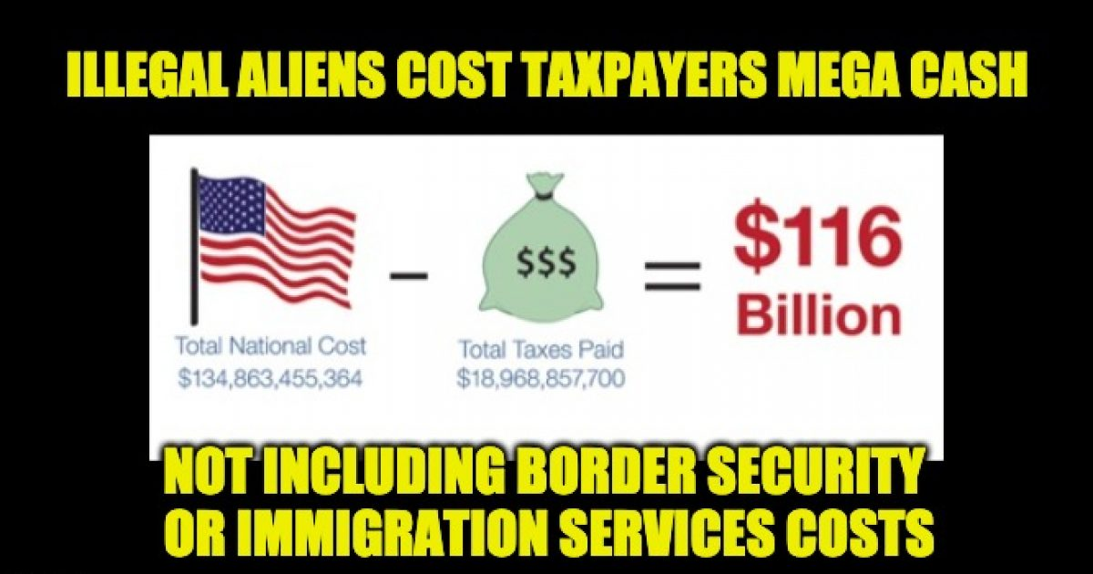 Illegals need Govt. services