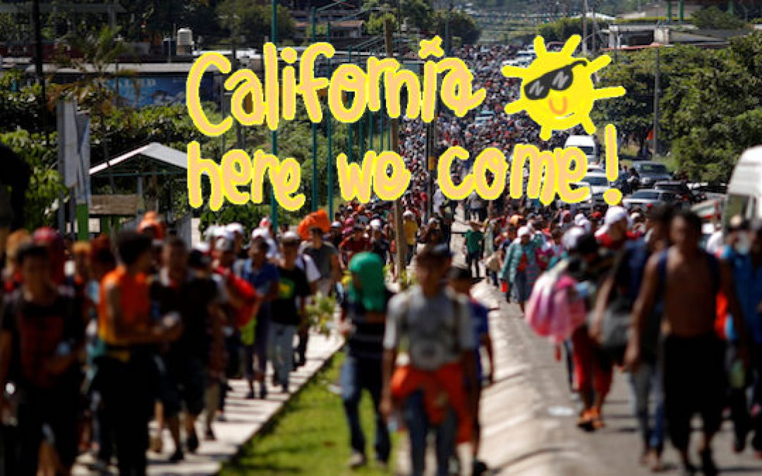 Liberal California Policies Luring Foreigners And Pushing Native-Borns Out