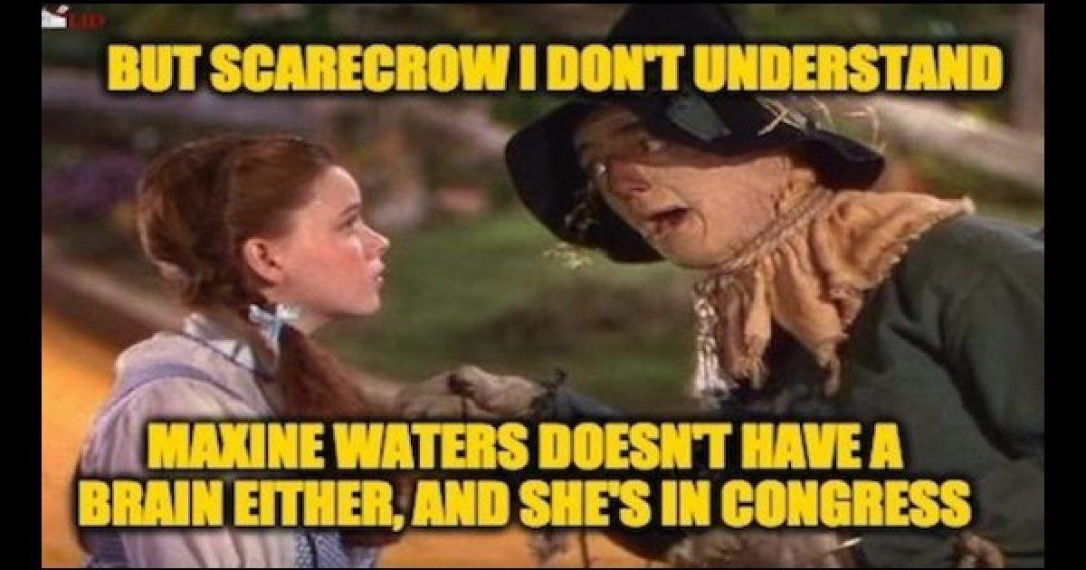 Mad Maxine Dan Crenshaw