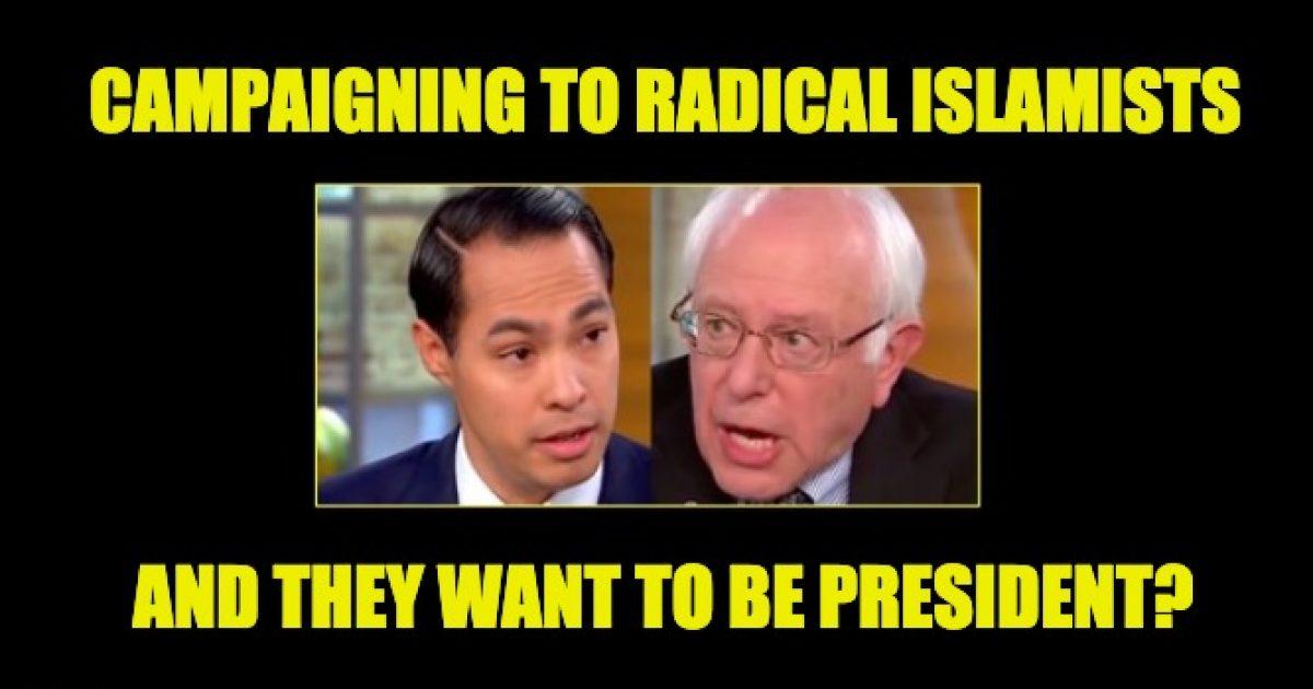 Sanders Castro terrorism