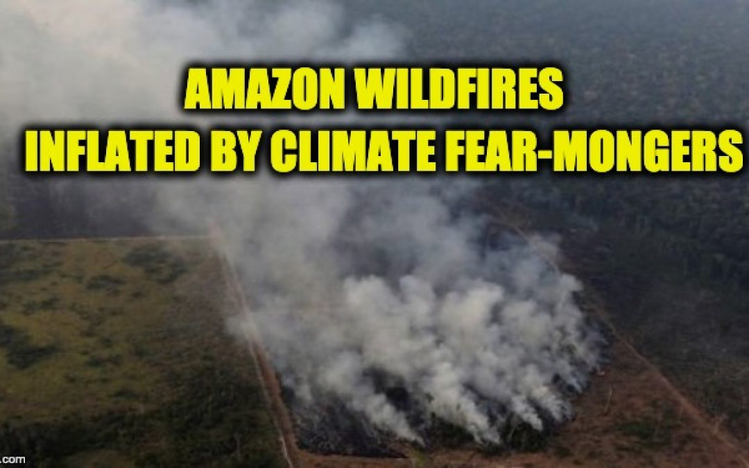 Lies, Damn Lies, And Rainforest Fear-Mongering