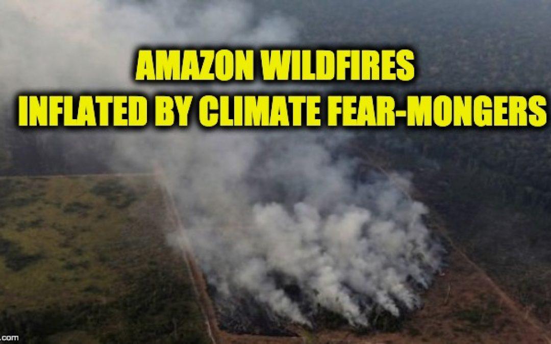 Lies, Damn Lies, And Rainforest Fear-Mongering