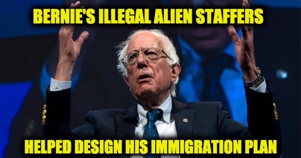 Bernie's illegals