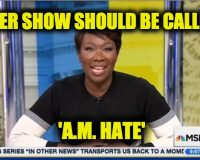 MSNBC's Joy Reid Trashes White Christians As Wanting To Create Apartheid In U.S.