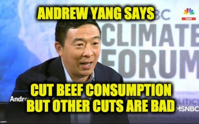 Andrew Yang: I'll Cut Beef Consumption By Making It More Expensive — Video