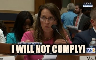 'I Will Not Comply,' Pro-Second Amendment Witness Tells House Judiciary