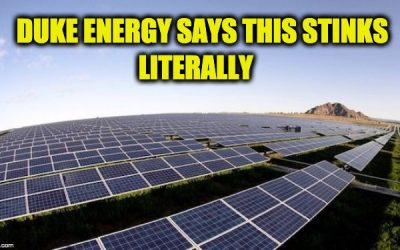 Energy Company Says Their Solar Power Program Is Increasing NOx Pollution