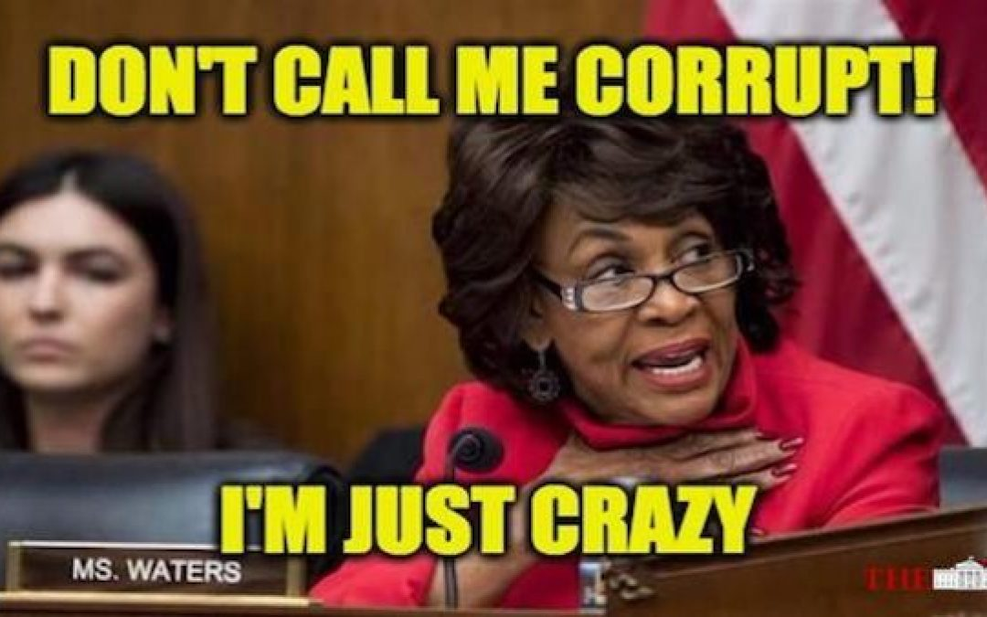 Corrupt Coward Maxine Waters Calls Trump Supporters Unpatriotic and 'Spineless'