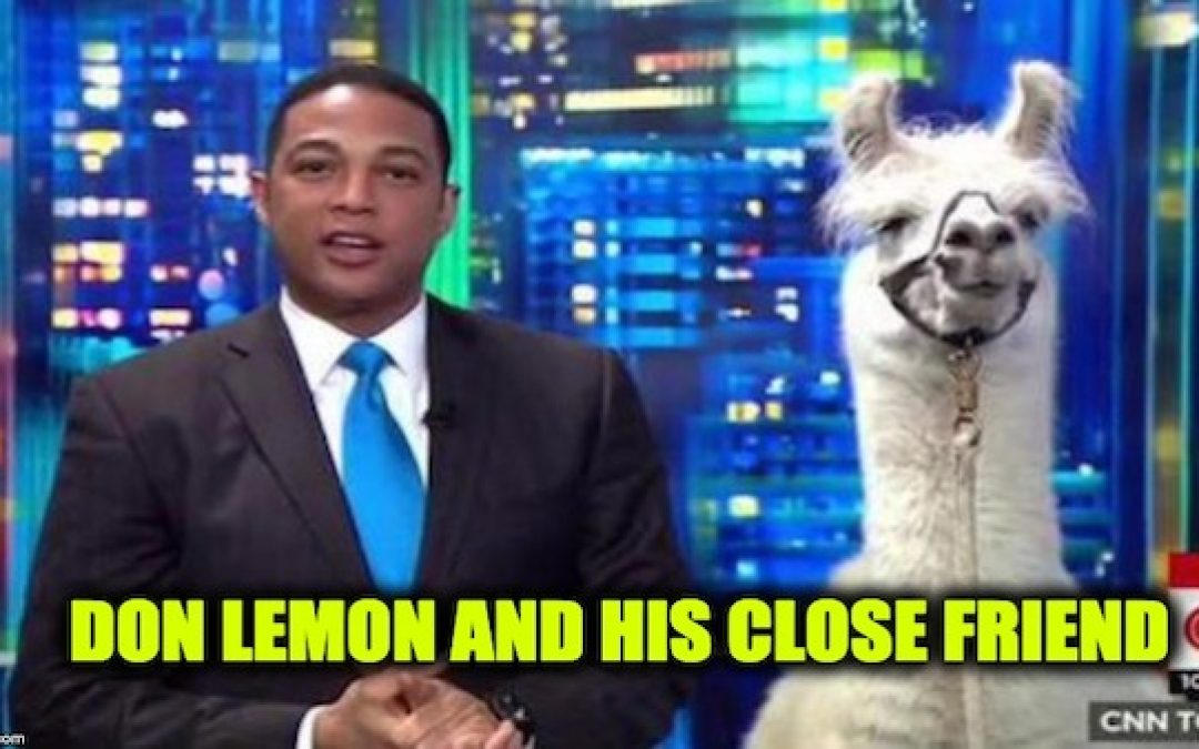 CNN's Don Lemon Insists Trump Supporters Are Mental