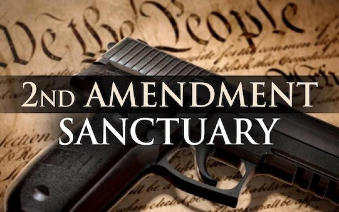 The Accelerating Growth Of The Second Amendment Sanctuary Movement
