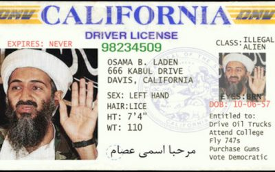 Homeland Security Investigating Liberal States for Giving Driver's Licenses to Illegals