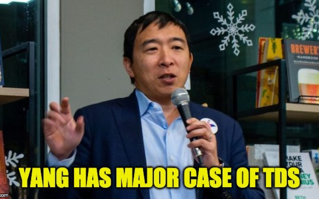 Democrat WH Candidate Andrew Yang Blames Trump For Dems' Iowa Caucus Disaster