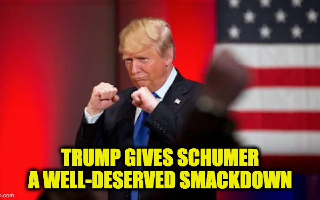 HOLY COW! Trump Sends Schumer Smack-Down Letter (Embedded)
