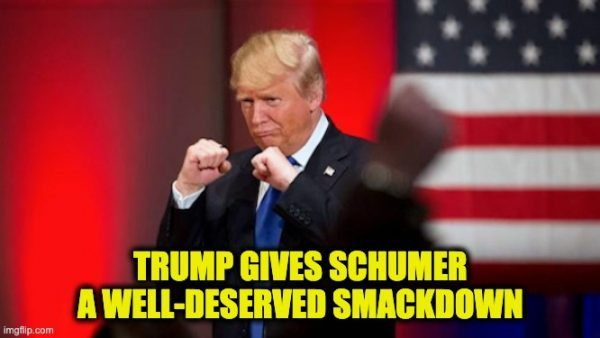 Trump smacks-down Schumer