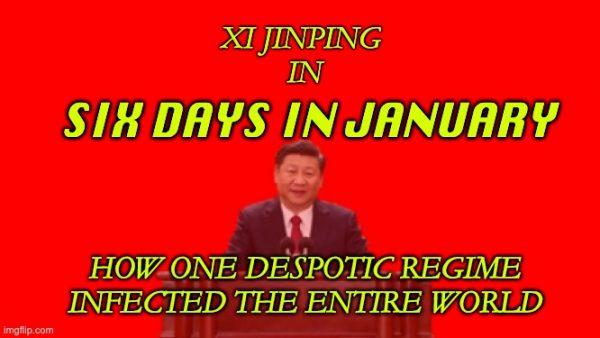 China's pandemic