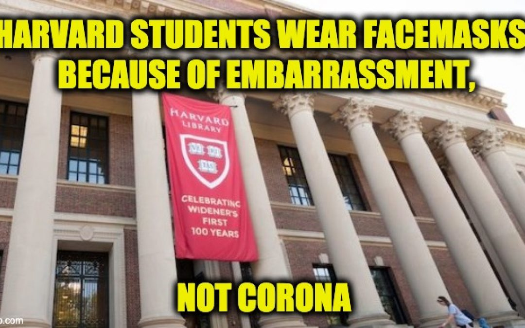 Harvard University's Lousy Two Weeks