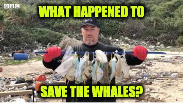 face masks killing whales