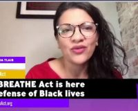 Tlaib, Pressley Introduce Breathe Act, A Bill To Abandon All Law Enforcement And Prisons