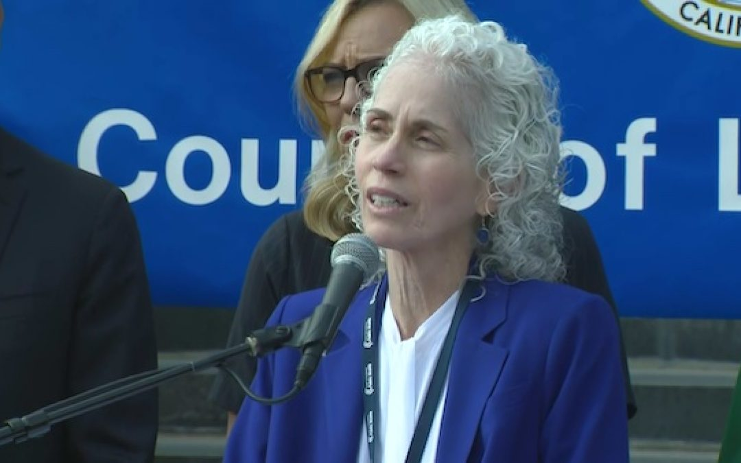 (With Audio)LA County Health Director Says That Schools will stay Closed Till 'After The Election'