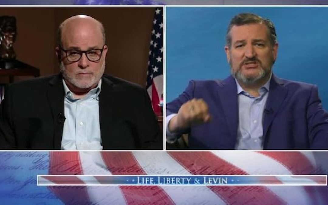 Ted Cruz Slams Democrats as 'Twisted and Deranged' Over Attacks Against Amy Coney Barrett (VIDEO)