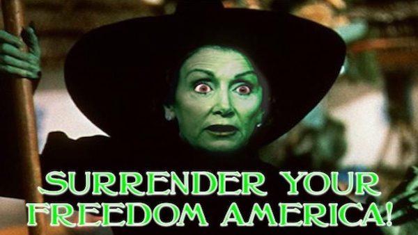 Nancy Pelosi socialism